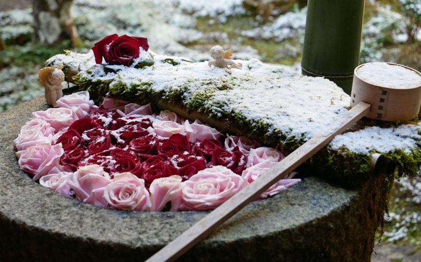 柳谷観音 雪の手水鉢