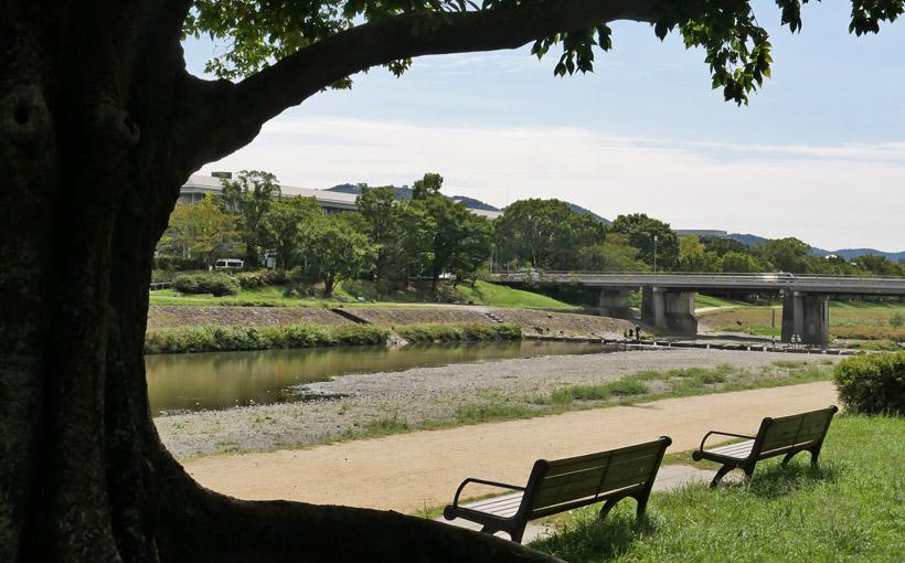 京都人の密かな愉しみ その10 鴨川沿いを歩く~3つの名水