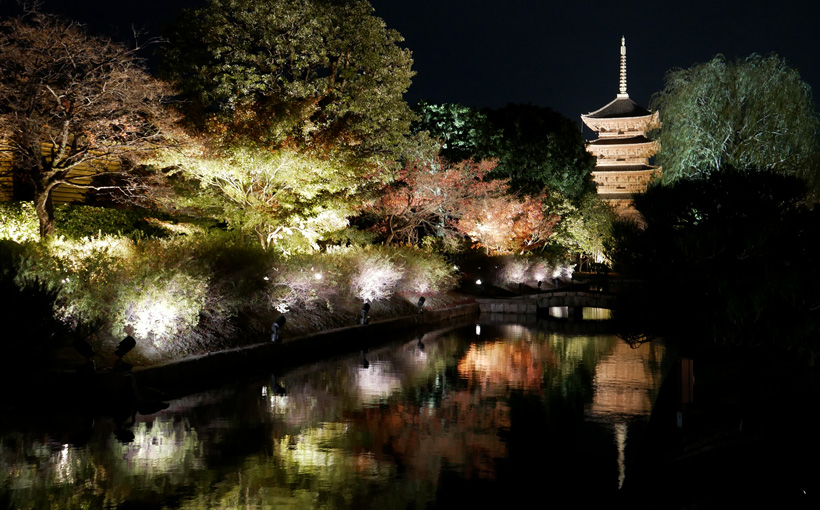 京都 東寺のライトアップ2020