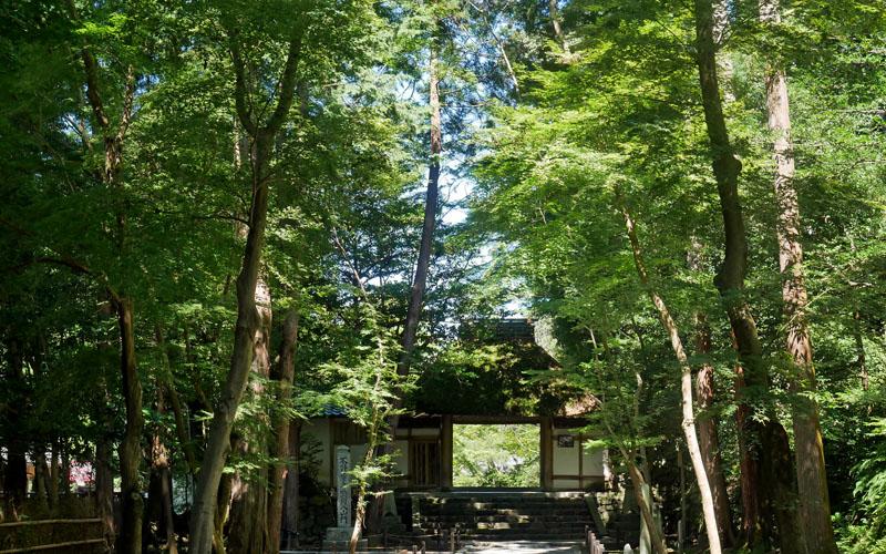 京城勝覧を巡る 第二日 法然院から銀閣寺、黒谷あたり