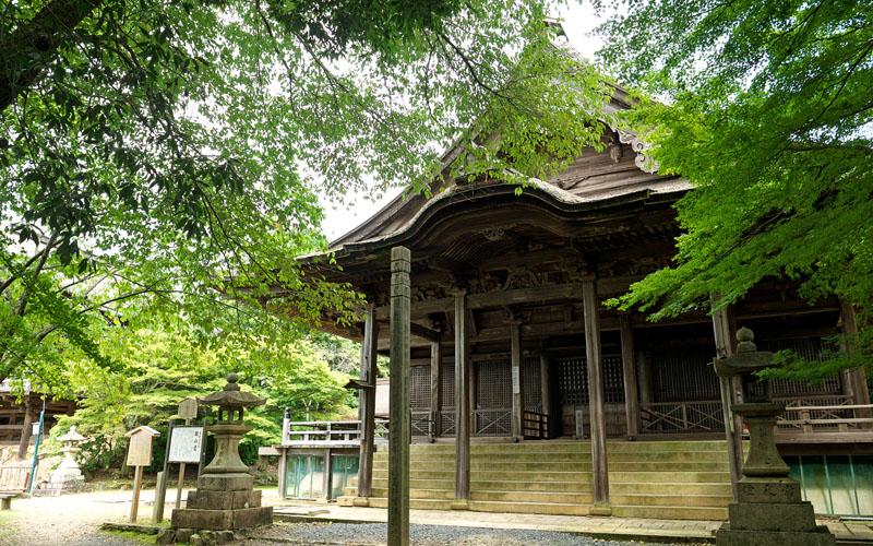京城勝覧を巡る 第四日 醍醐山に登る