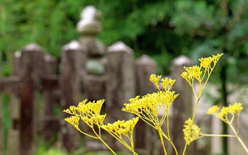 京城勝覧を巡る 第十日 男塚女塚と橋本